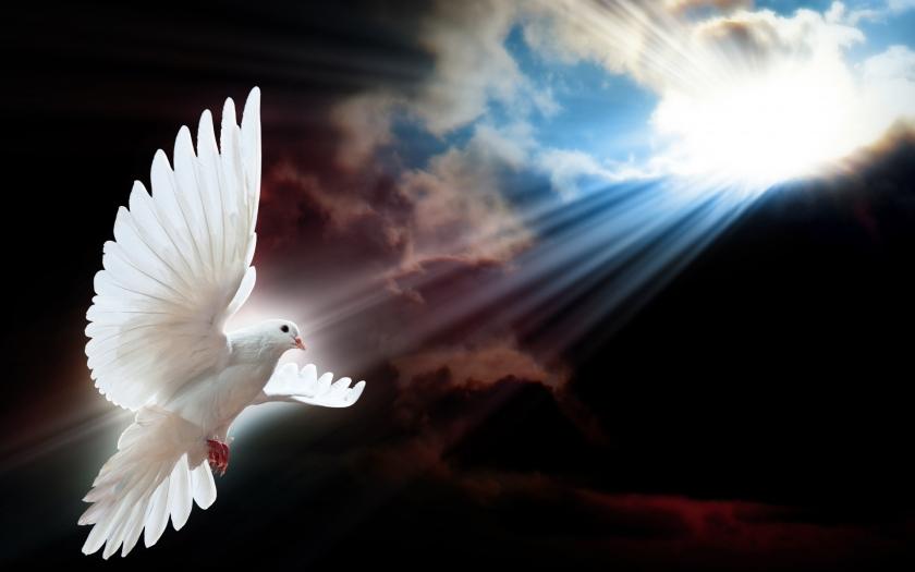 Barış ile ilgili söylenmiş güzel sözler