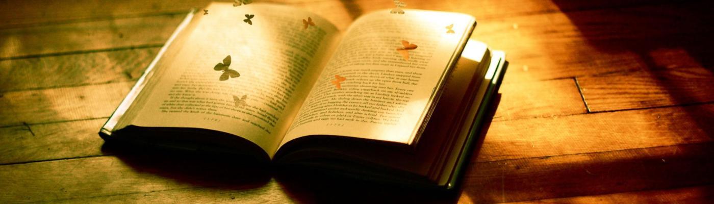 Edebiyat ile ilgili anlamlı ve güzel sözler