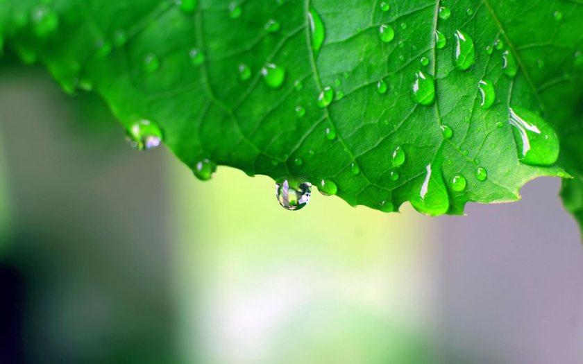 Yağmur ile ilgili anlamlı ve güzel sözler