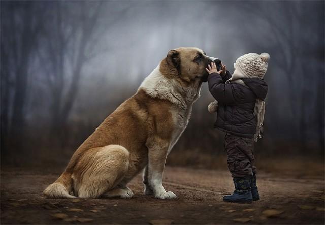 Hayvan sevgisi ile ilgili anlamlı ve güzel sözler